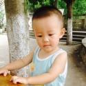 萍萍/aiq363