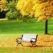 avatar of 壮壮麻麻s66u99