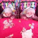 紫琦和娅琦宝宝