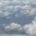 avatar of awen,