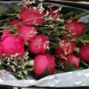 花开花落s39u12