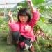 xiaojing481